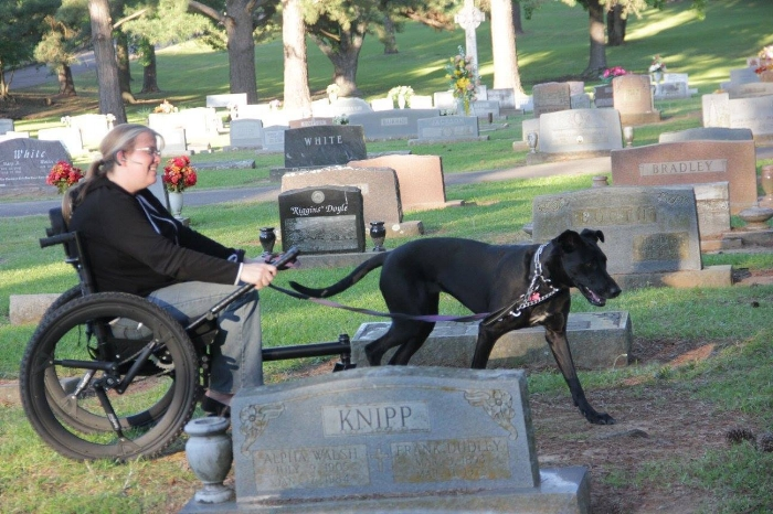 Crys Davis and her Service Dog navigate through a cemetery doing field work for her graduate degree.