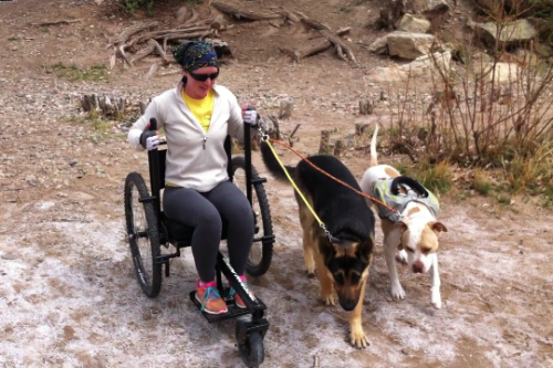 "Learn more "" Tips and Tricks for Walking a Dog from a Wheelchair  ""   HERE  !"