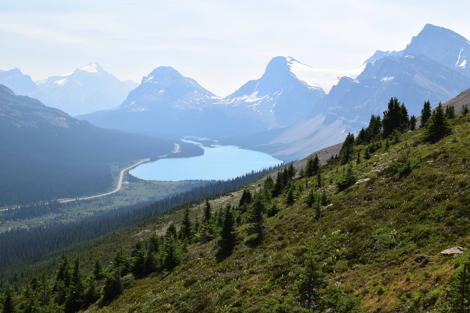 Bow Lake & Bow Glacier from Bow Summit