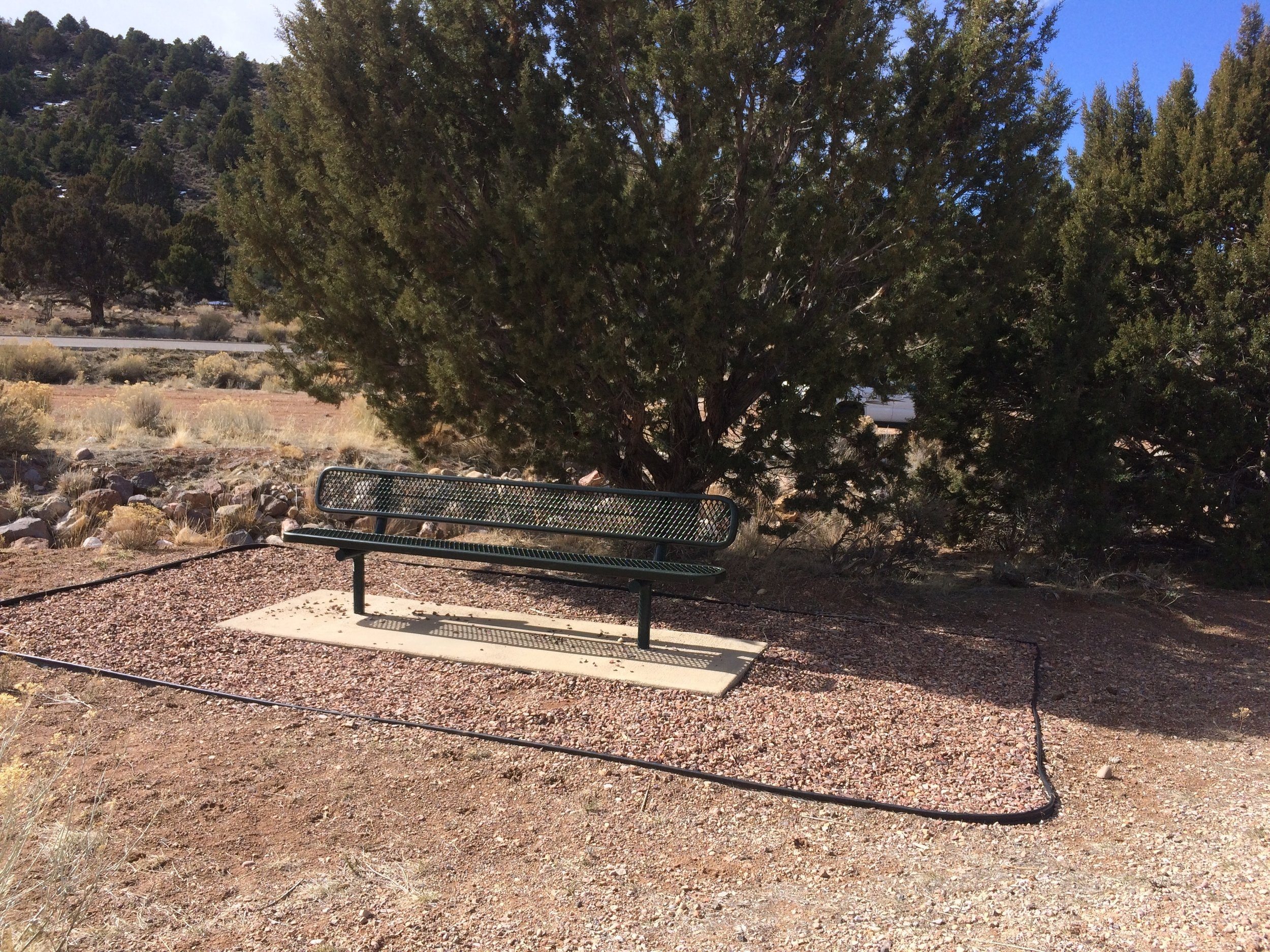 West Trail Head bench