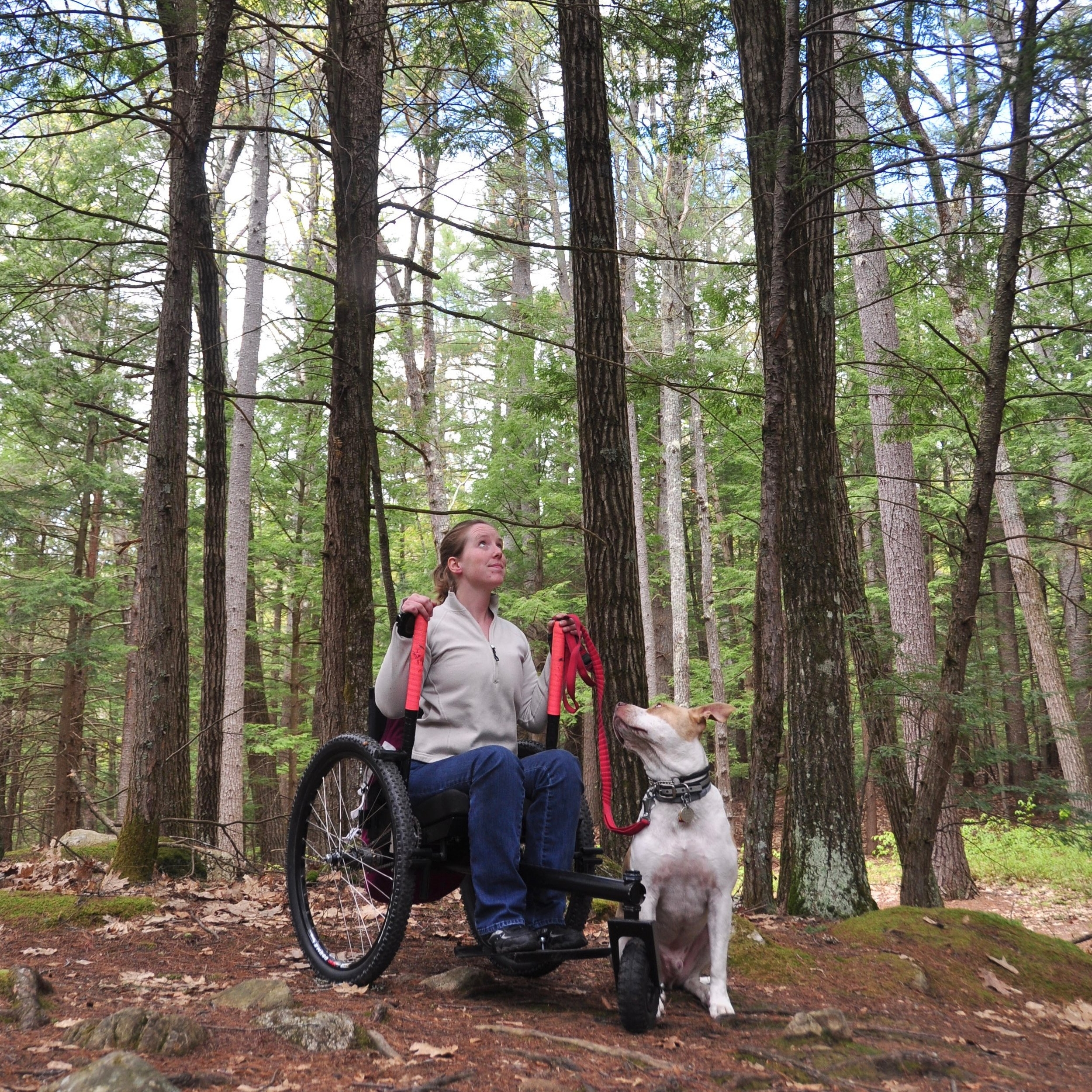 MAY:   Conditions will now allow me to move up into higher elevations to explore. However, the spring melt makes the ground quite soft, and even downright muddy. Luckily, my Freedom Chair not only keeps my hands clean over this mucky terrain, but it allows me the ability to power through it.