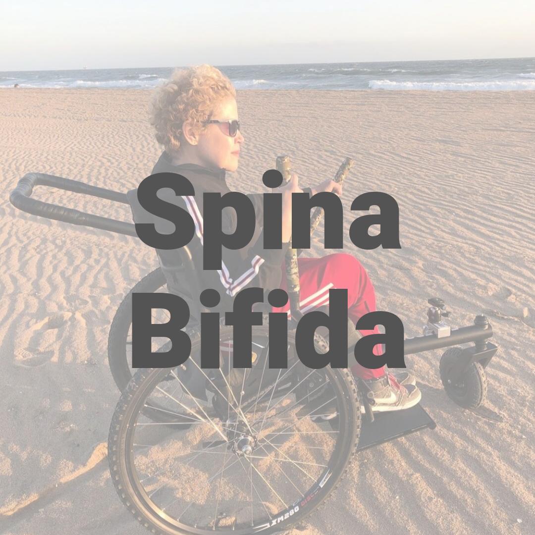 Spina Bifida.png