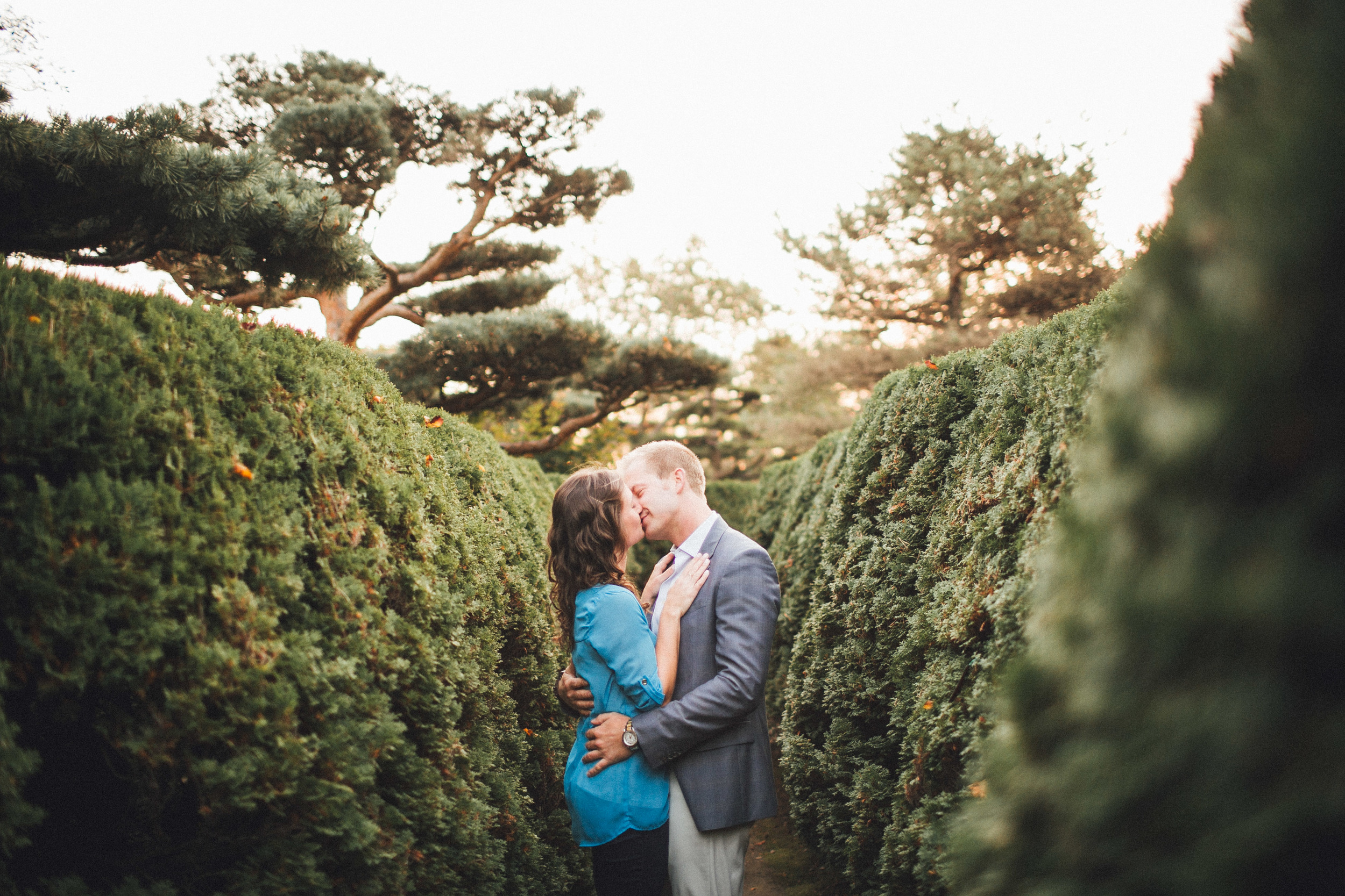 mayden photography_chicago botanical gardens engagement photo-3.jpg