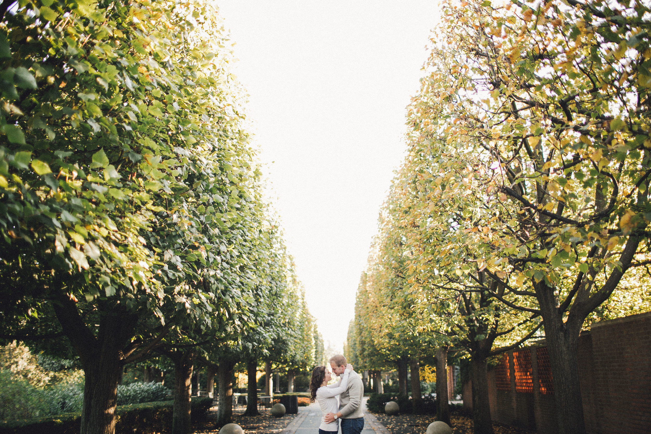 mayden photography_chicago botanical gardens engagement photo-35.jpg