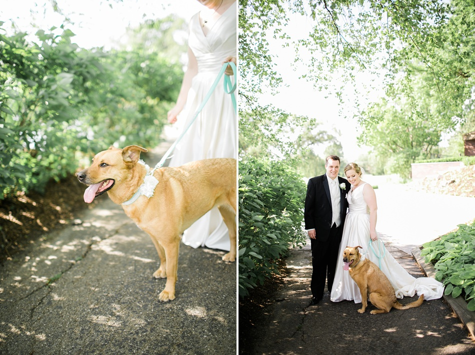 WeddingPortraitWithDog