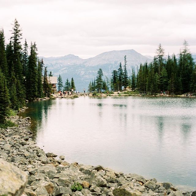 I just got some film back from @indiefilmlab of our weekend trip to Banff earlier this year. This was our first alpine lake we reached after a couple mile hike. There is a log tea house on the shore that sits over a waterfall. There is no electricity and all of the supplies are brought in by pack horses or back packs. Imagine siting on the porch overlooking Banff and this serene lake while chomping on the most amazing tuna sandwich on homemade bread and sipping some chai tea. Okay, take me back 🏔