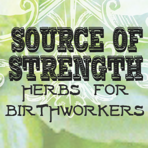 Herbs for Birthworkers Doulas Midwives