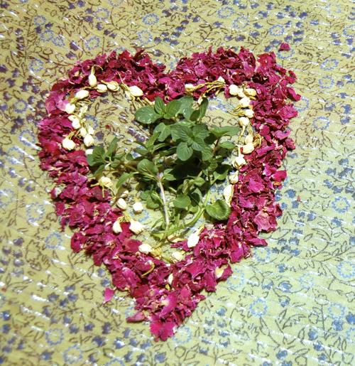 Heart Healing Herbs