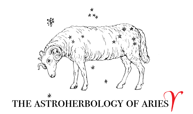 Astroherbology Astroherbalism Aries