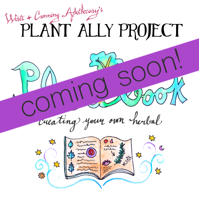 Plant Ally Project Plantbook.png
