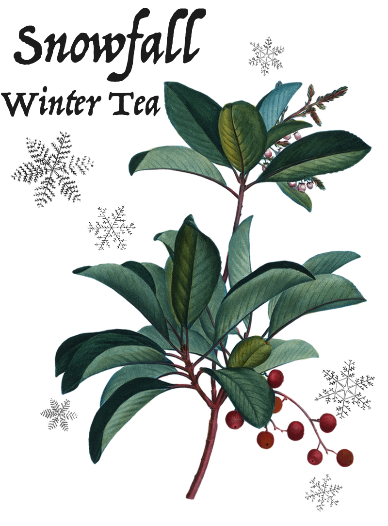 Snowfall Winter Tea.jpg