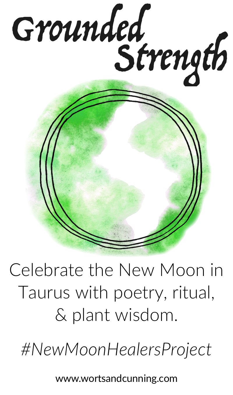 taurus astroherbology astroherbalism medical astrology