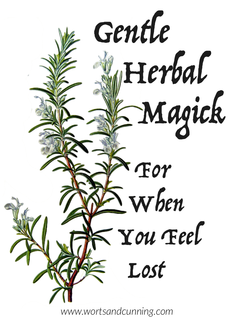 Rosemary Magickal Uses Herbal Magick