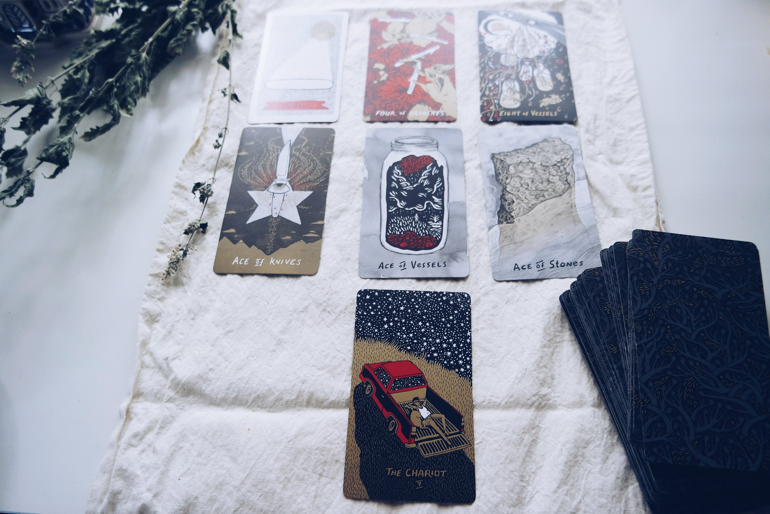 Slow Holler Tarot Deck