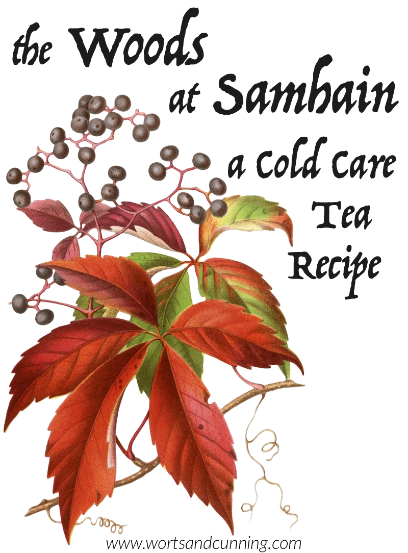 samhain herbs tea