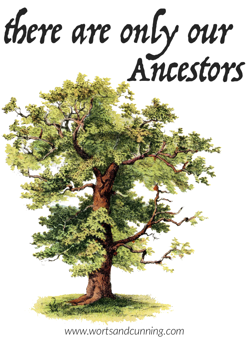Only Our Ancestors.png