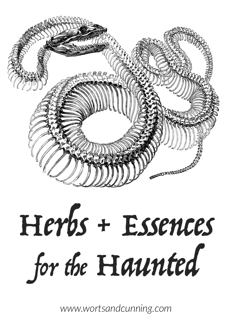 herbs for hauntings
