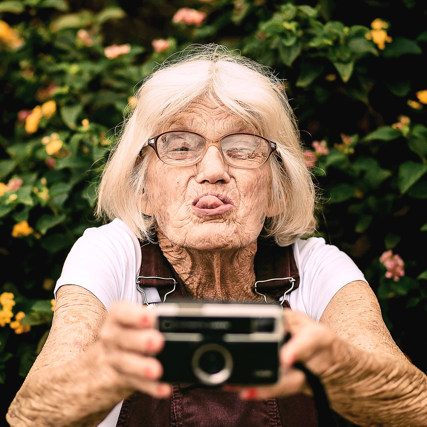 camera_glasses_lady_elder_inlinephtography_Photo+by+Edu+Carvalho+from+Pexels.jpg