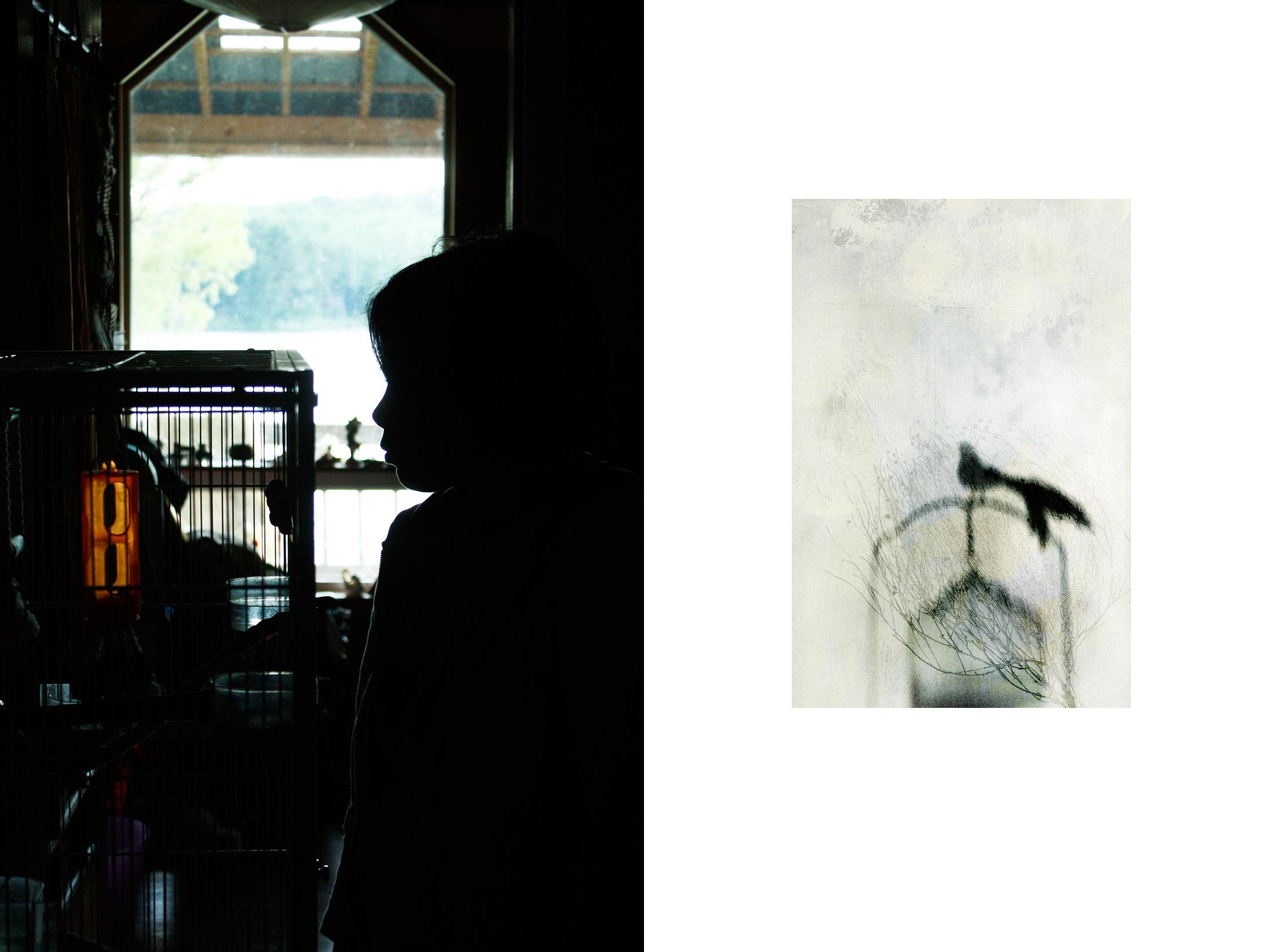 openess-freebird.jpg