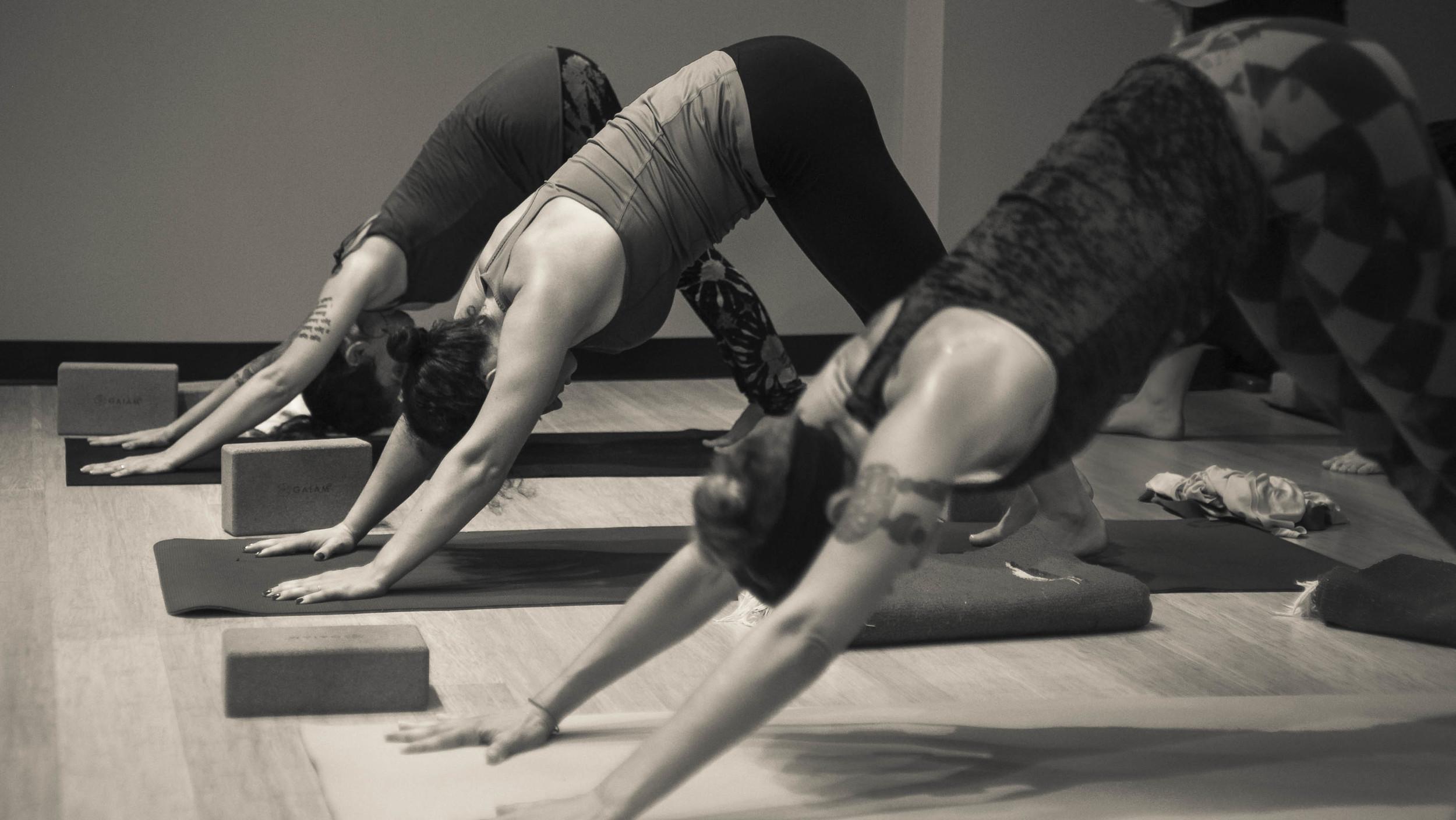 Yoga-Yiva-EditAfterLR-1-5.jpg