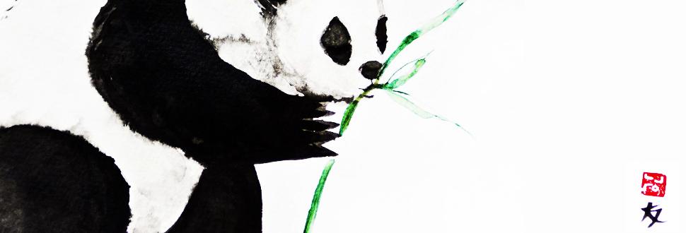 PandaComposition copy.jpg