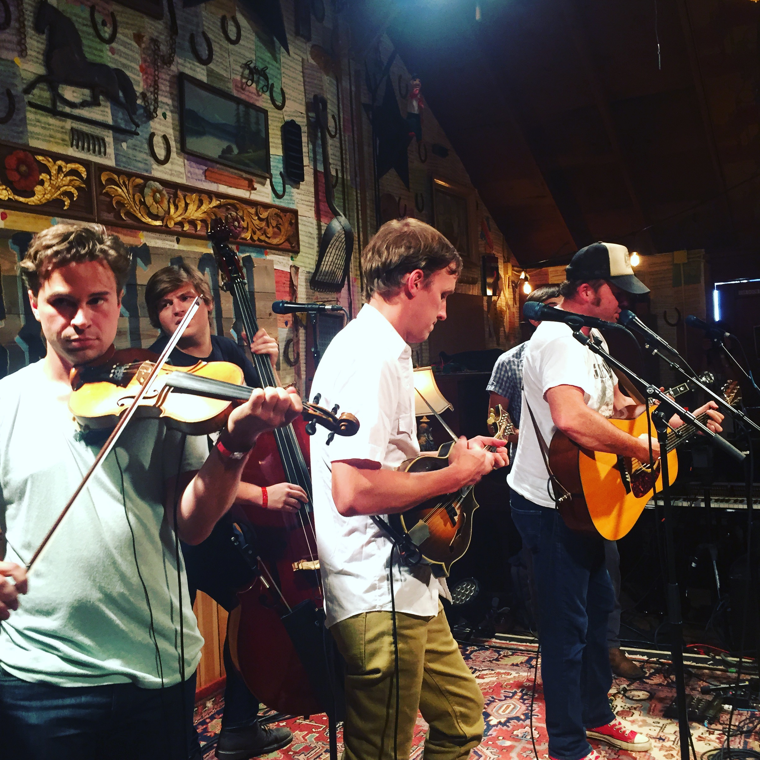 Town Mountain at Pickathon 2016.