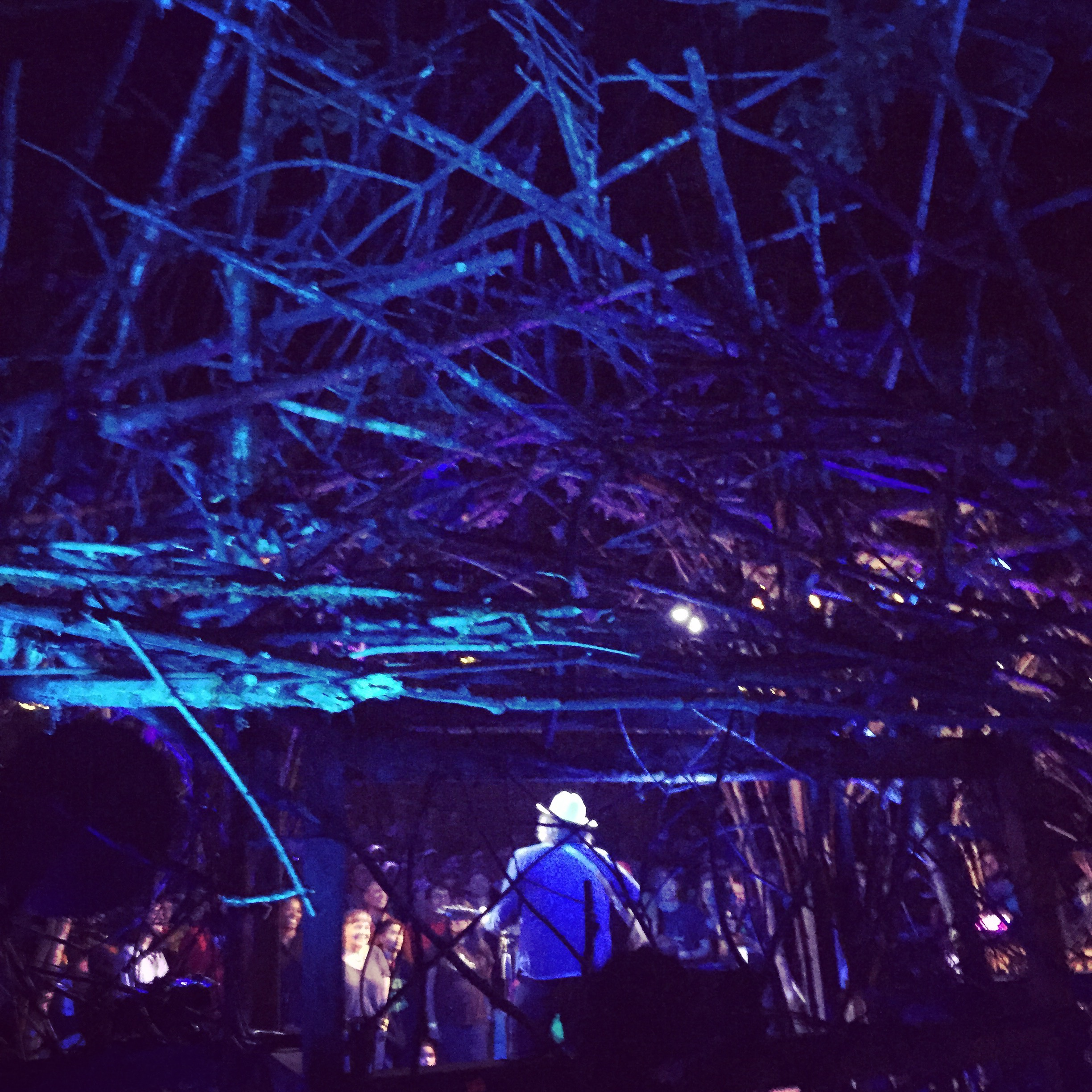 Jeff Tweedy at Pickathon 2016.