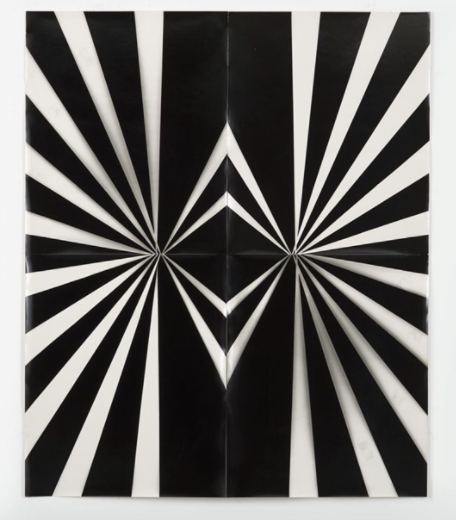 Wendy Small, 2016, Photogram, 48 x 40 inches