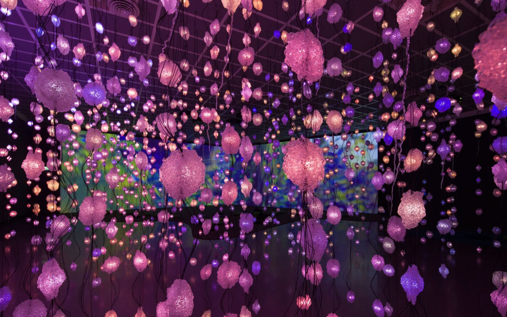 Pipilotti Rist: Pixel Forest, Installation view, New Museum, October 26, 2016 - January 15, 2017