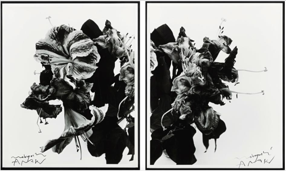 Nobuyoshi Araki, From Close to Range, 1991, Sotheby's, Estimate: $40,000 – 60,000
