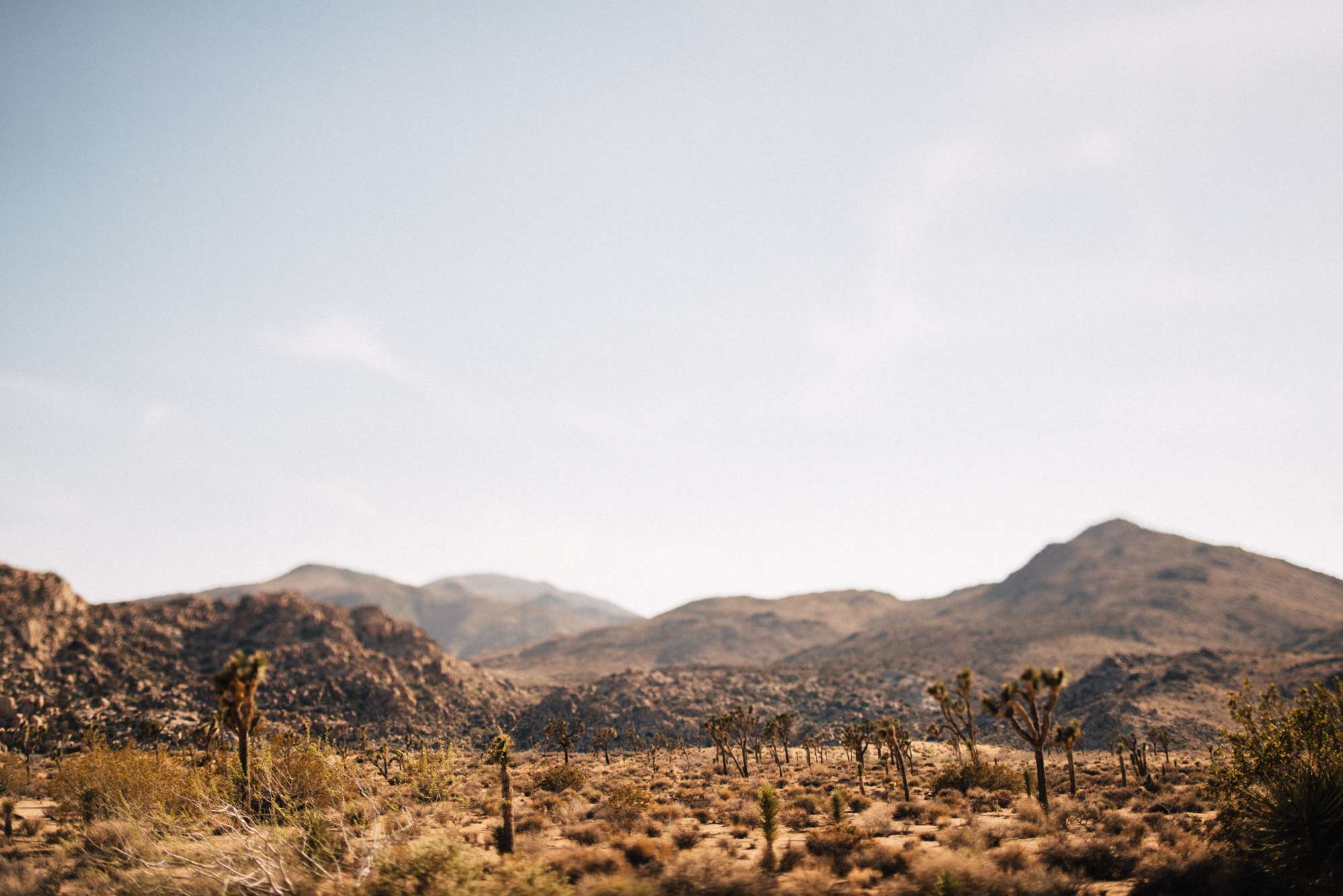 ©Isaiah & Taylor Photography - Destination Wedding Photographers - Joshua Tree, California Adventure Engagement-001.jpg