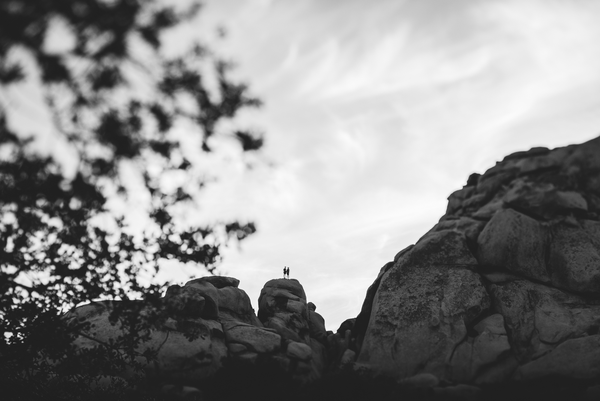 ©Isaiah & Taylor Photography - Destination Wedding Photographers - Joshua Tree, California Adventure Engagement-027.jpg