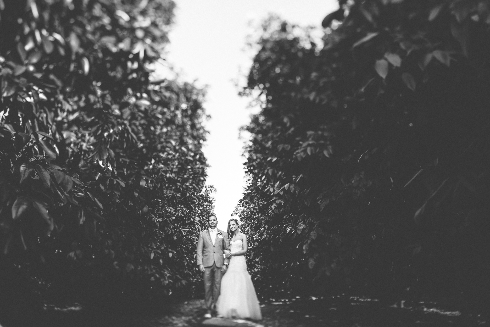 Isaiah & Taylor Photography - Destination Photographers - Temecula Winery Sunset Wedding-4.jpg