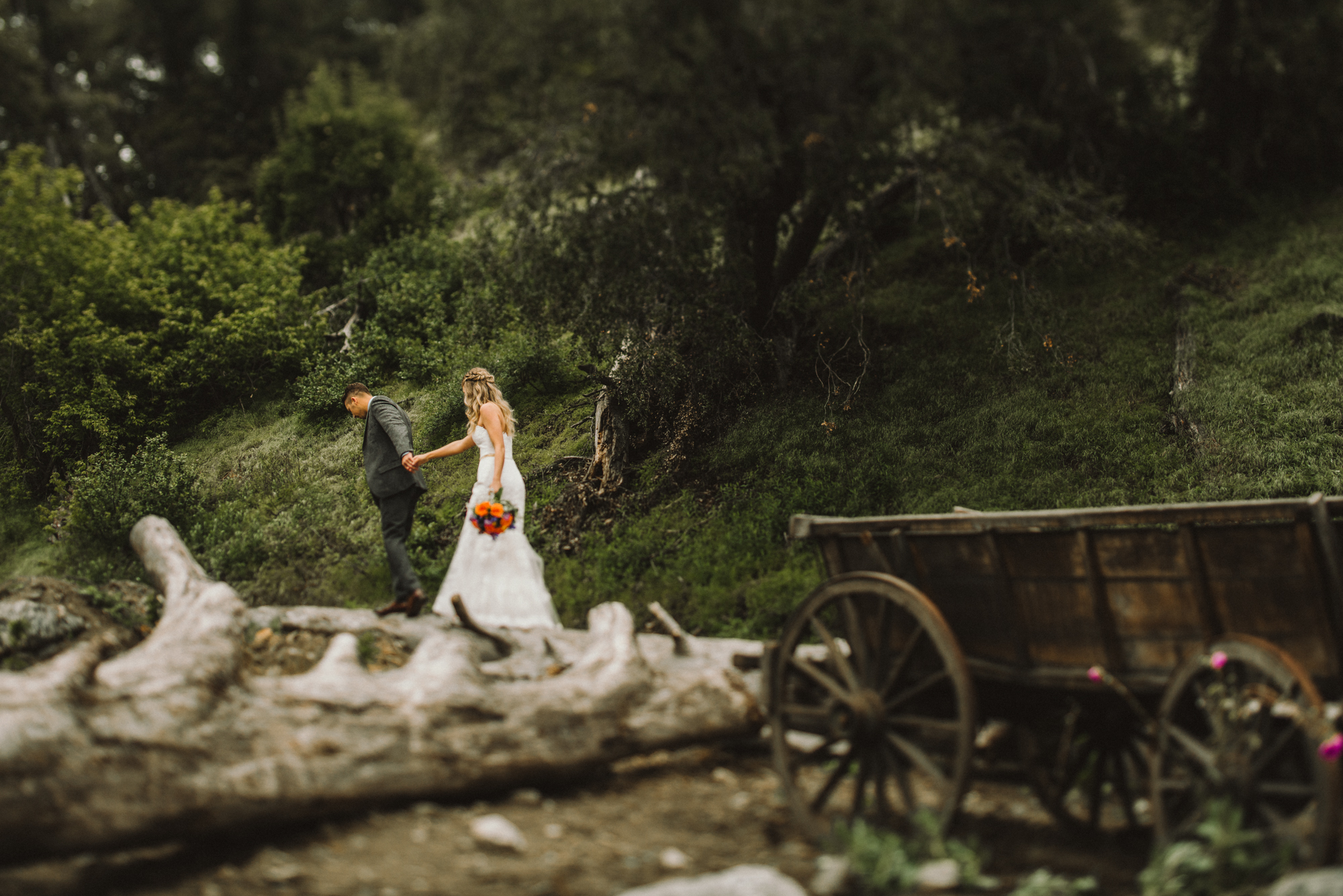 Isaiah & Taylor Photography - Los Angeles - Destination Wedding Photographers - Oak Glen Wilshire Ranch Foggy Forest Wedding-46.jpg