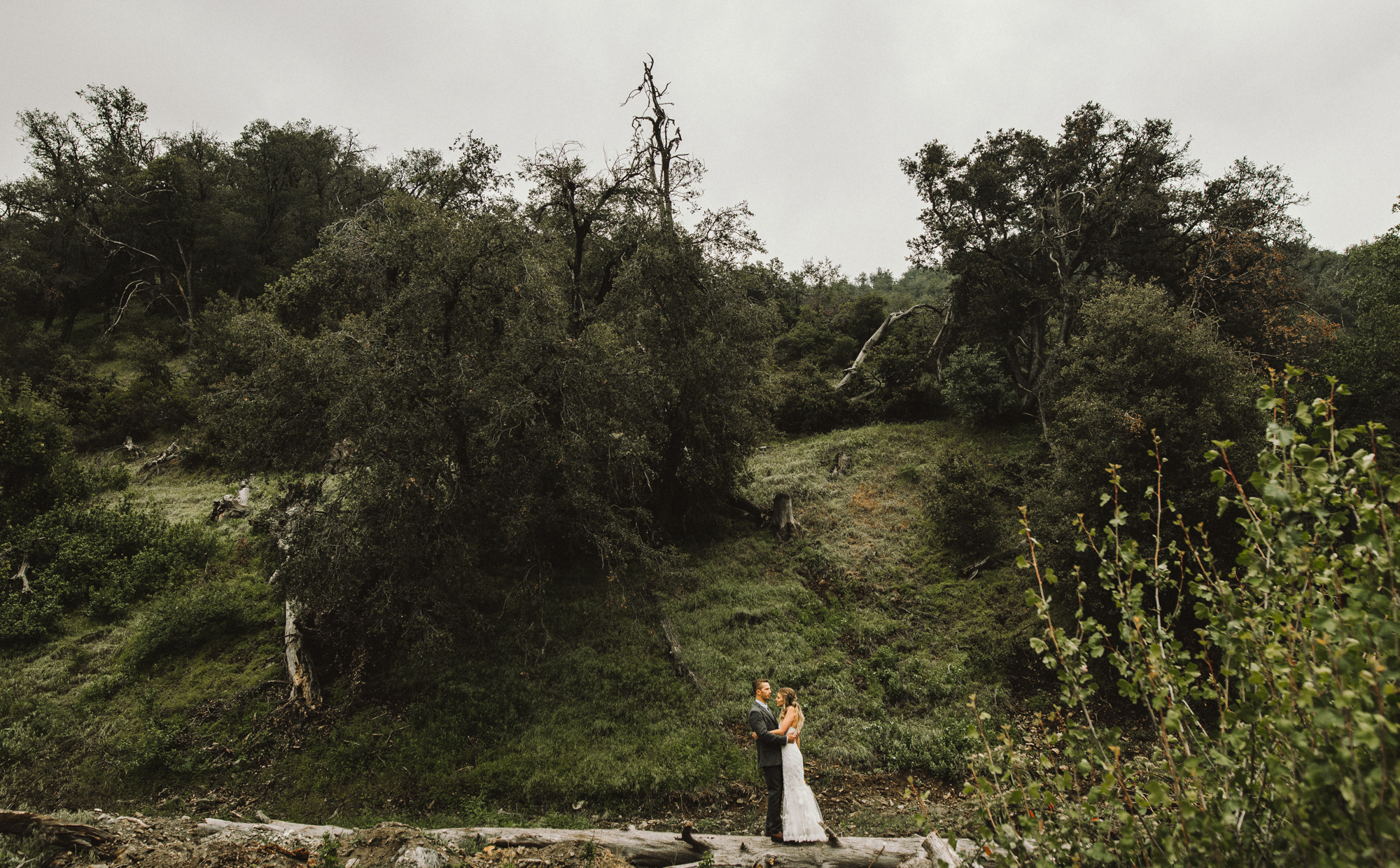 Isaiah & Taylor Photography - Los Angeles - Destination Wedding Photographers - Oak Glen Wilshire Ranch Foggy Forest Wedding-45.jpg