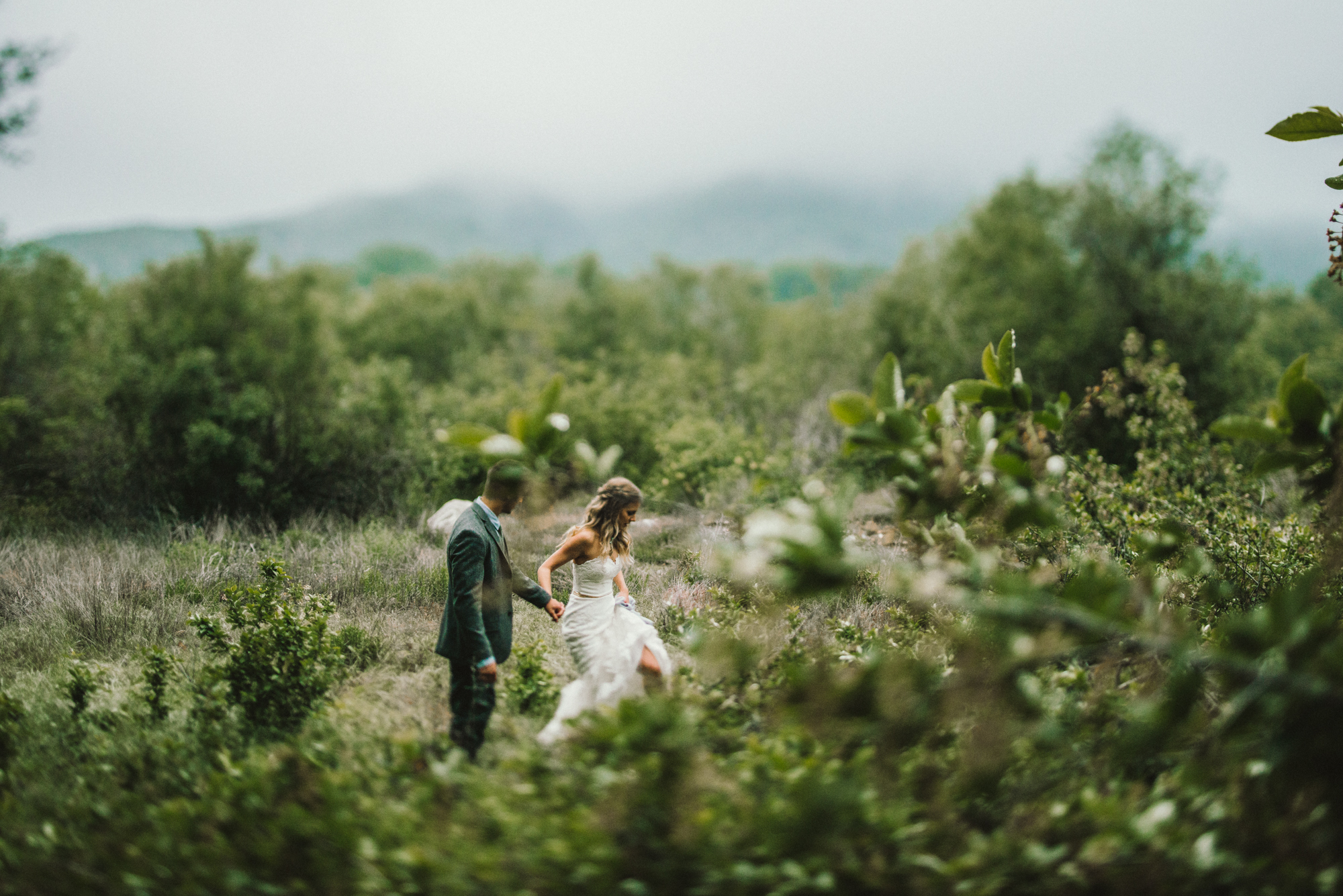 Isaiah & Taylor Photography - Los Angeles - Destination Wedding Photographers - Oak Glen Wilshire Ranch Foggy Forest Wedding-74.jpg