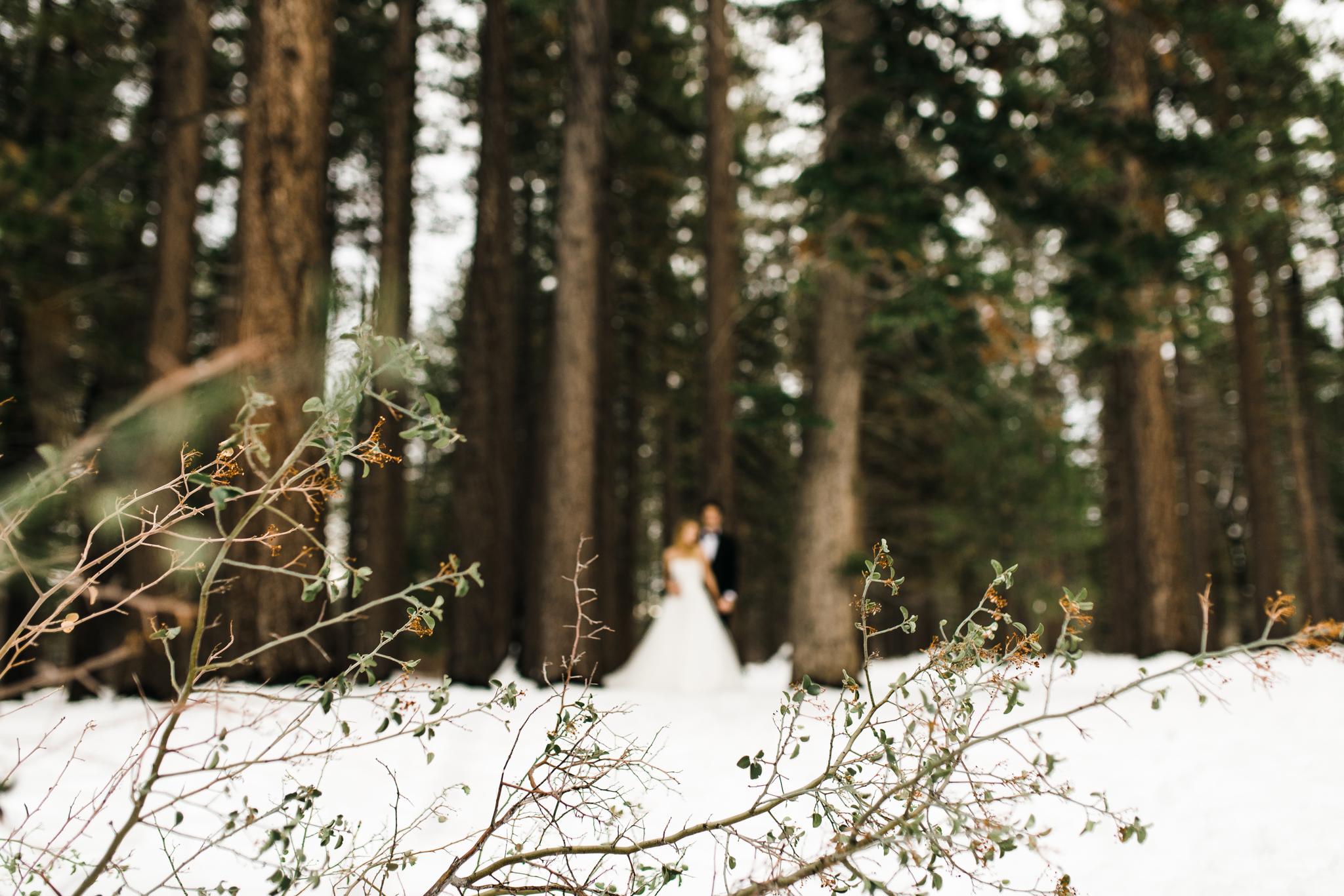 ©Isaiah & Taylor Photography - Ben & Kadin Honeymoon-020.jpg