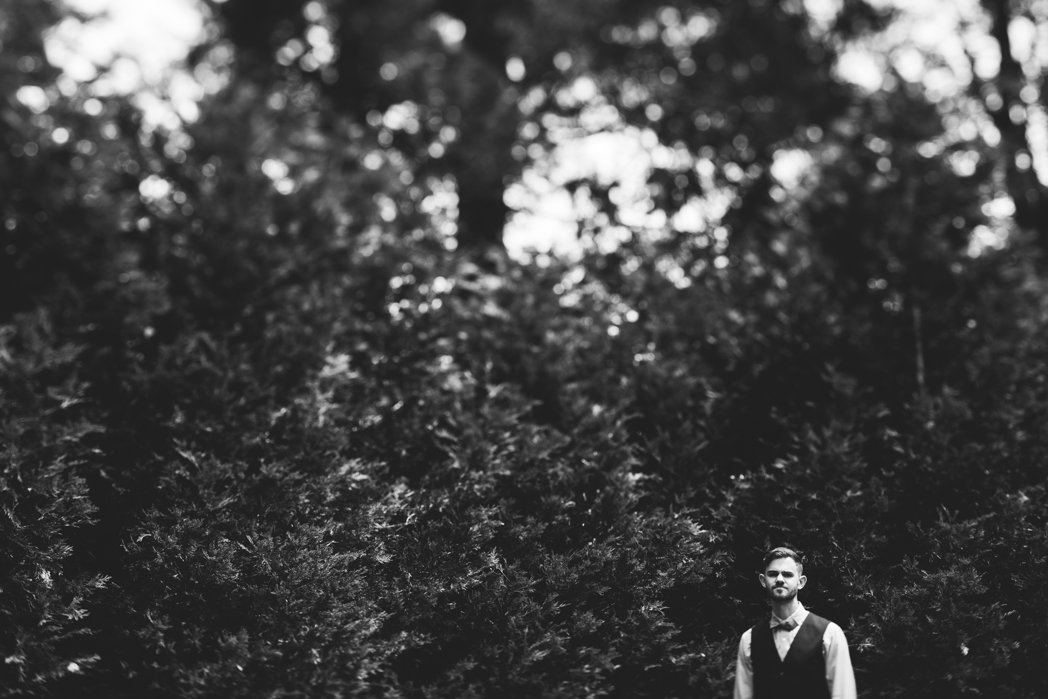 ©Isaiah & Taylor Photography - Pine Rose Cabin - Lake Arrowhead - Los Angeles Wedding Photographer-031.jpg