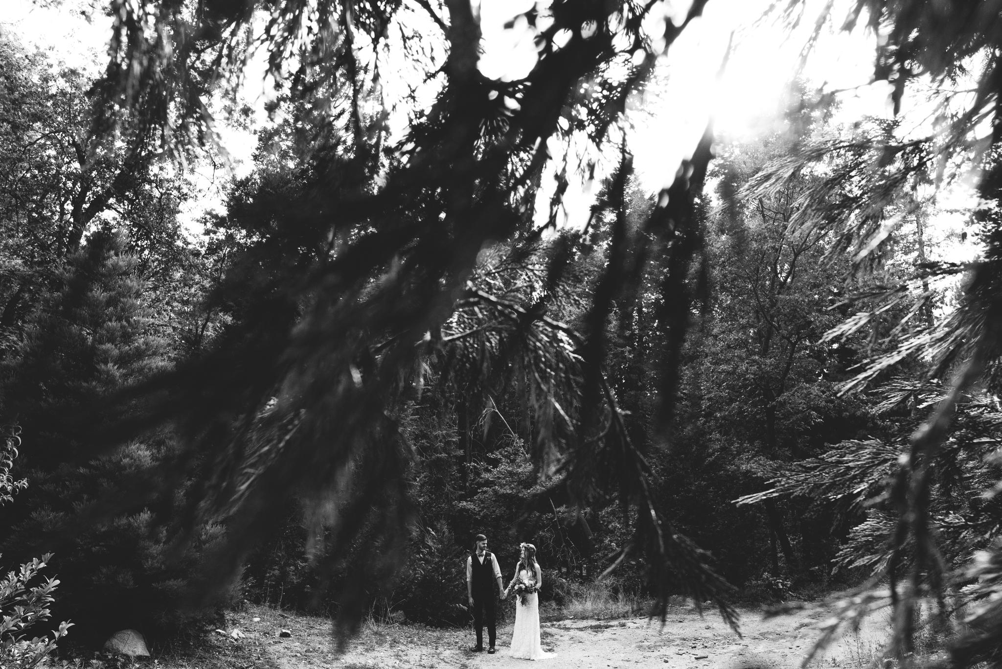 ©Isaiah & Taylor Photography - Pine Rose Cabin - Lake Arrowhead - Los Angeles Wedding Photographer-059.jpg