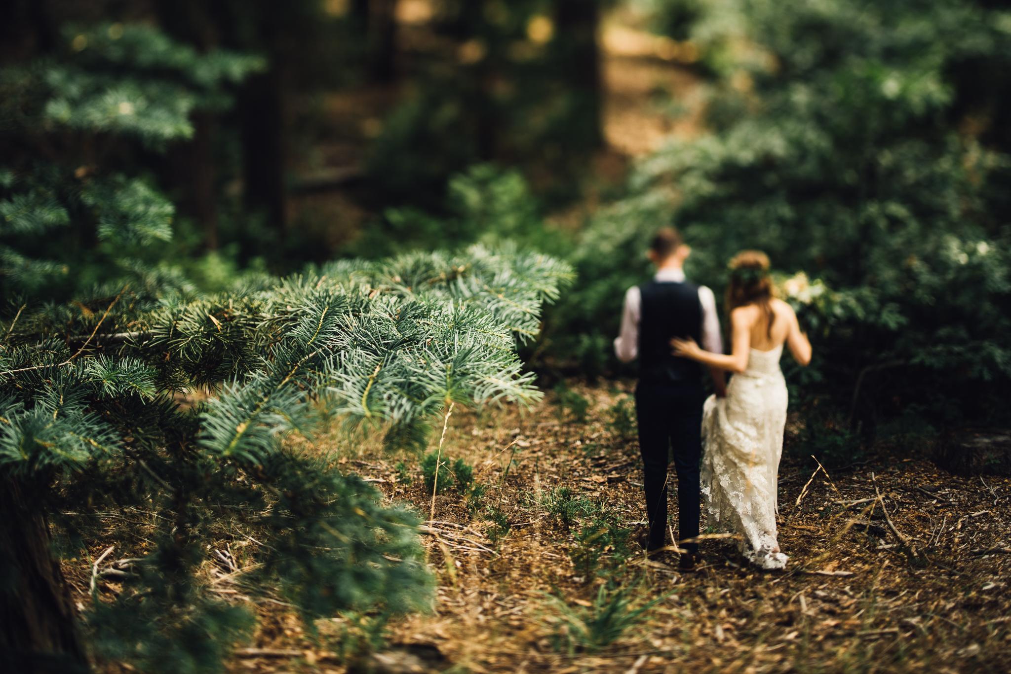 ©Isaiah & Taylor Photography - Pine Rose Cabin - Lake Arrowhead - Los Angeles Wedding Photographer-068.jpg