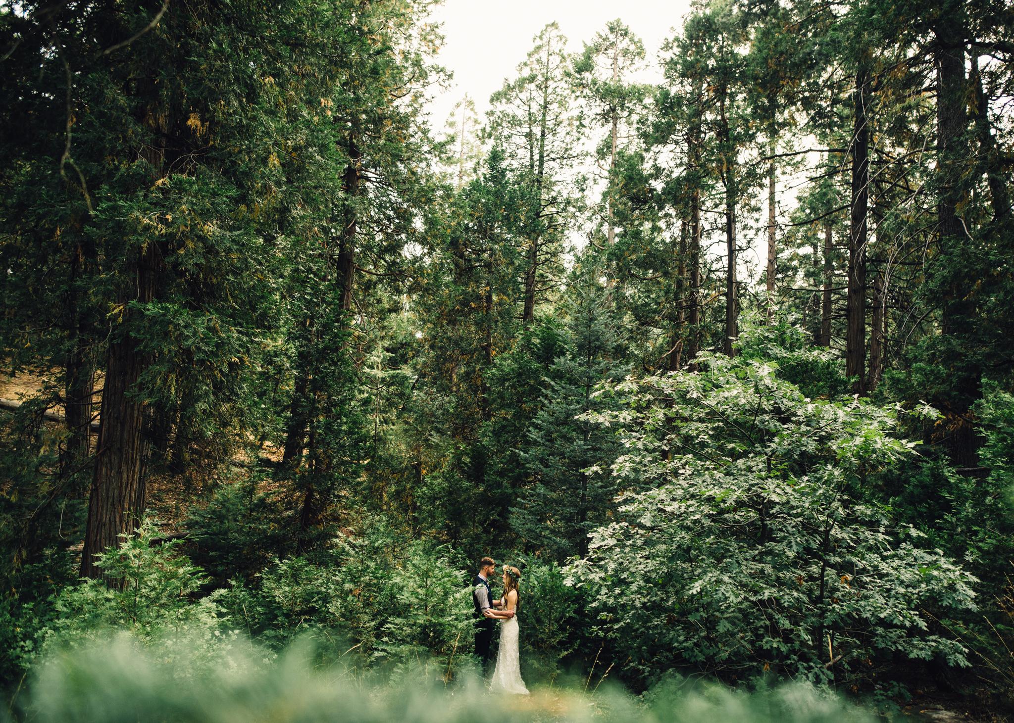 ©Isaiah & Taylor Photography - Pine Rose Cabin - Lake Arrowhead - Los Angeles Wedding Photographer-074.jpg