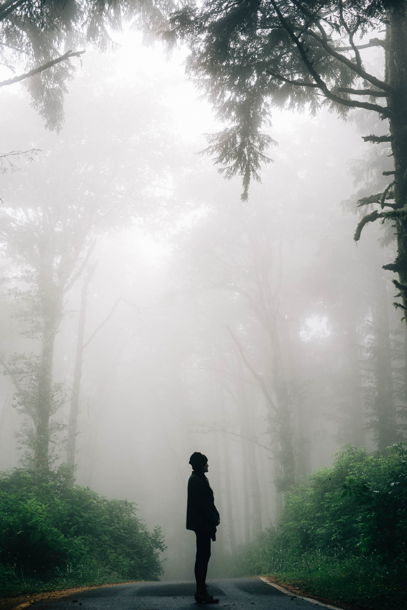 ©The Ryans Photography_Foggy Trails, Oregon-006.jpg
