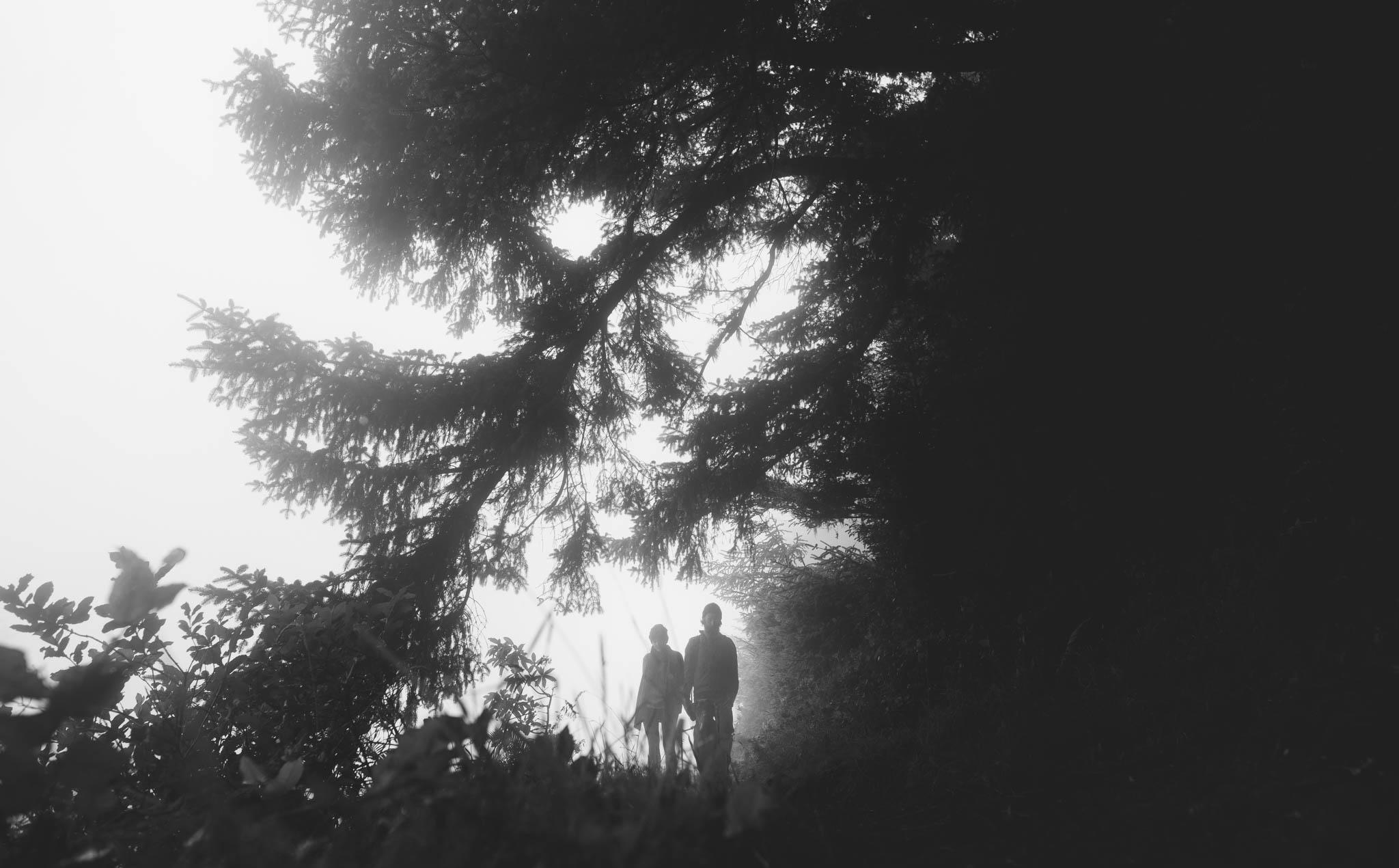 ©The Ryans Photography_Foggy Trails, Oregon-015.jpg