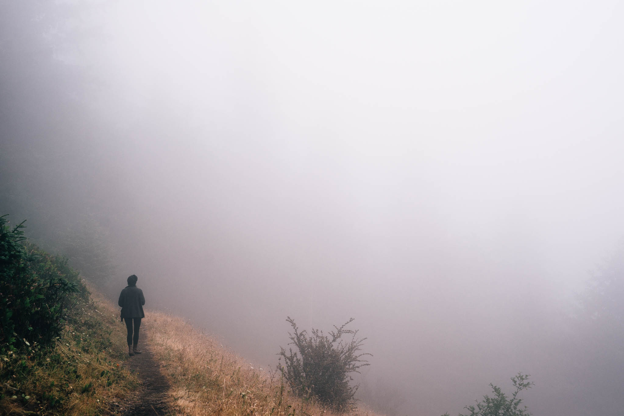 ©The Ryans Photography_Foggy Trails, Oregon-021.jpg