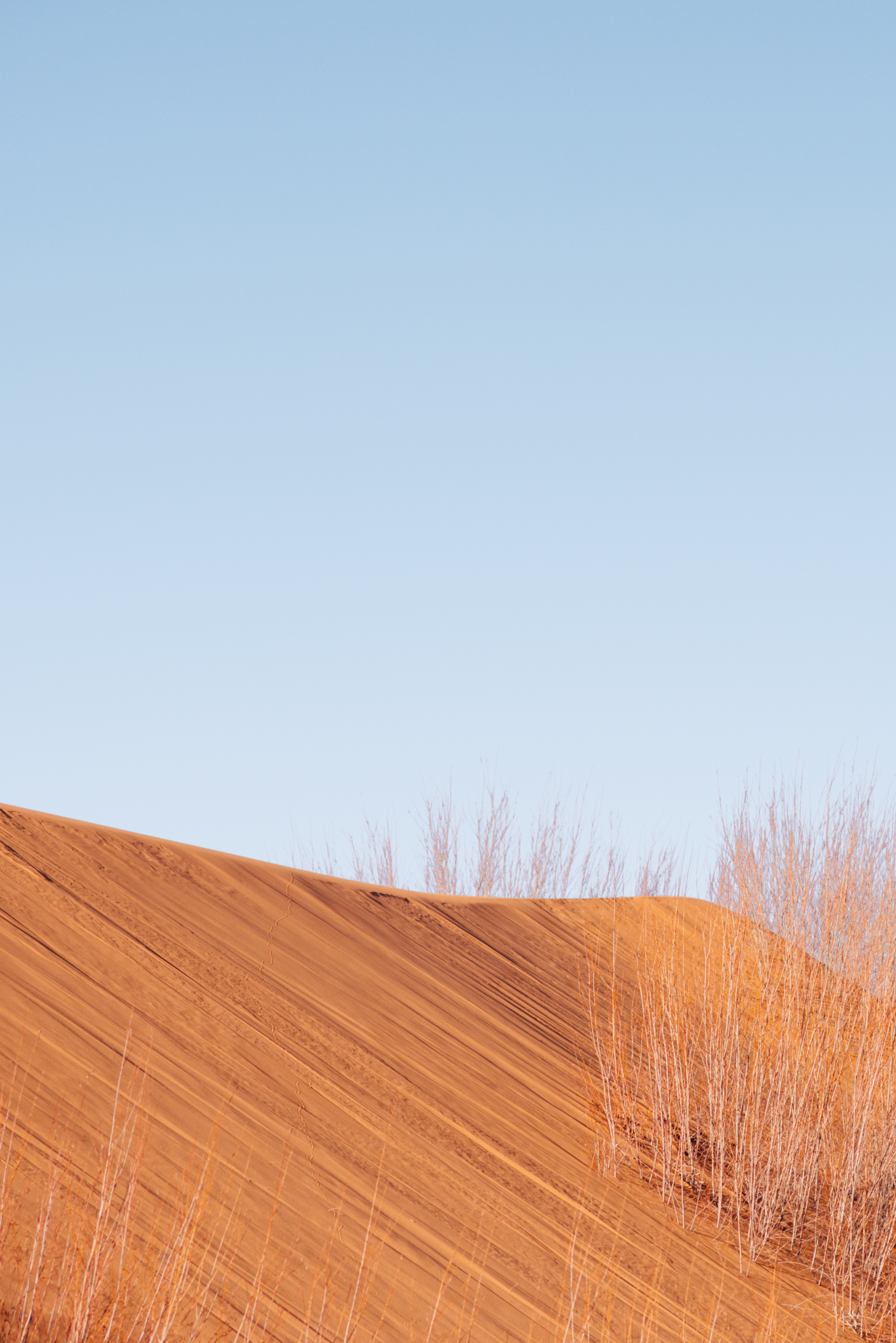 ©Isaiah & Taylor Photography - Los Angeles Destination Photographer - Lifestyle Commercial Corral Sand Dunes-1.jpg