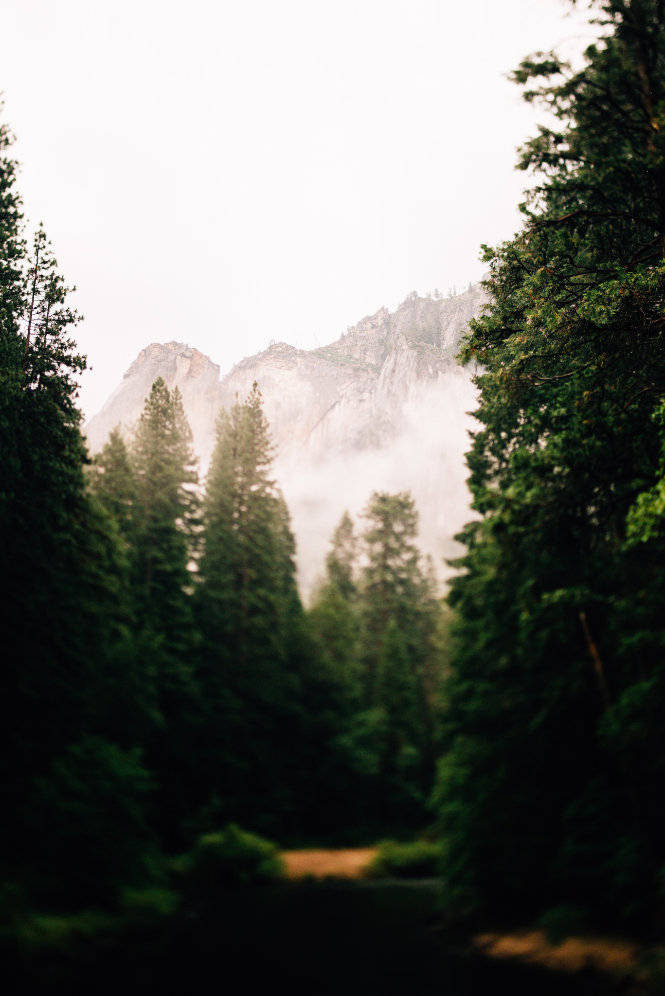 ©Isaiah & Taylor Photography - Los Angeles Wedding Photographer - Yosemite -010.jpg