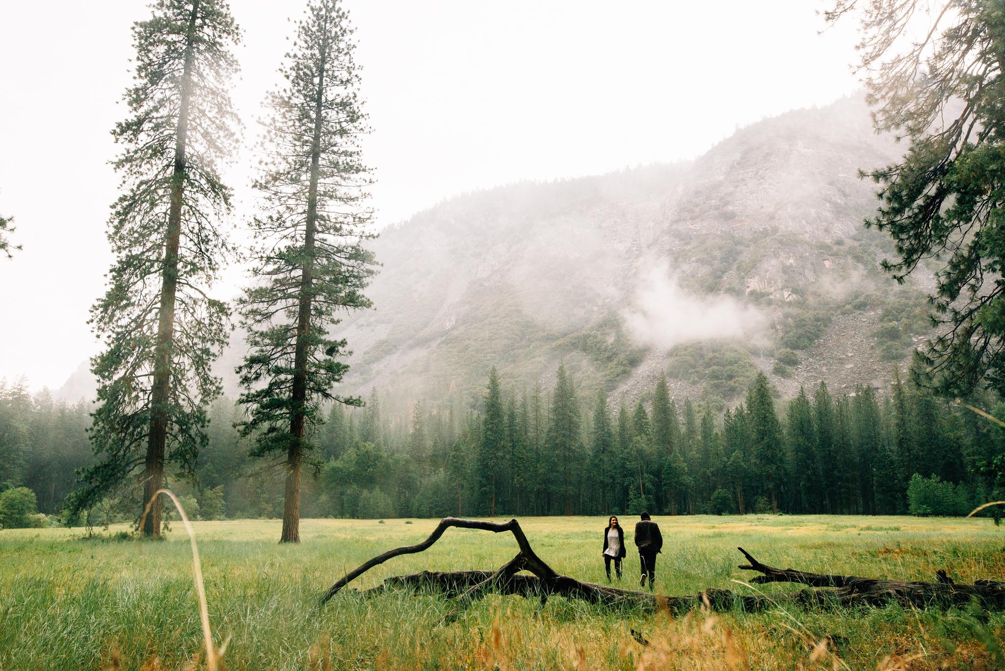 ©Isaiah & Taylor Photography - Los Angeles Wedding Photographer - Yosemite -014.jpg