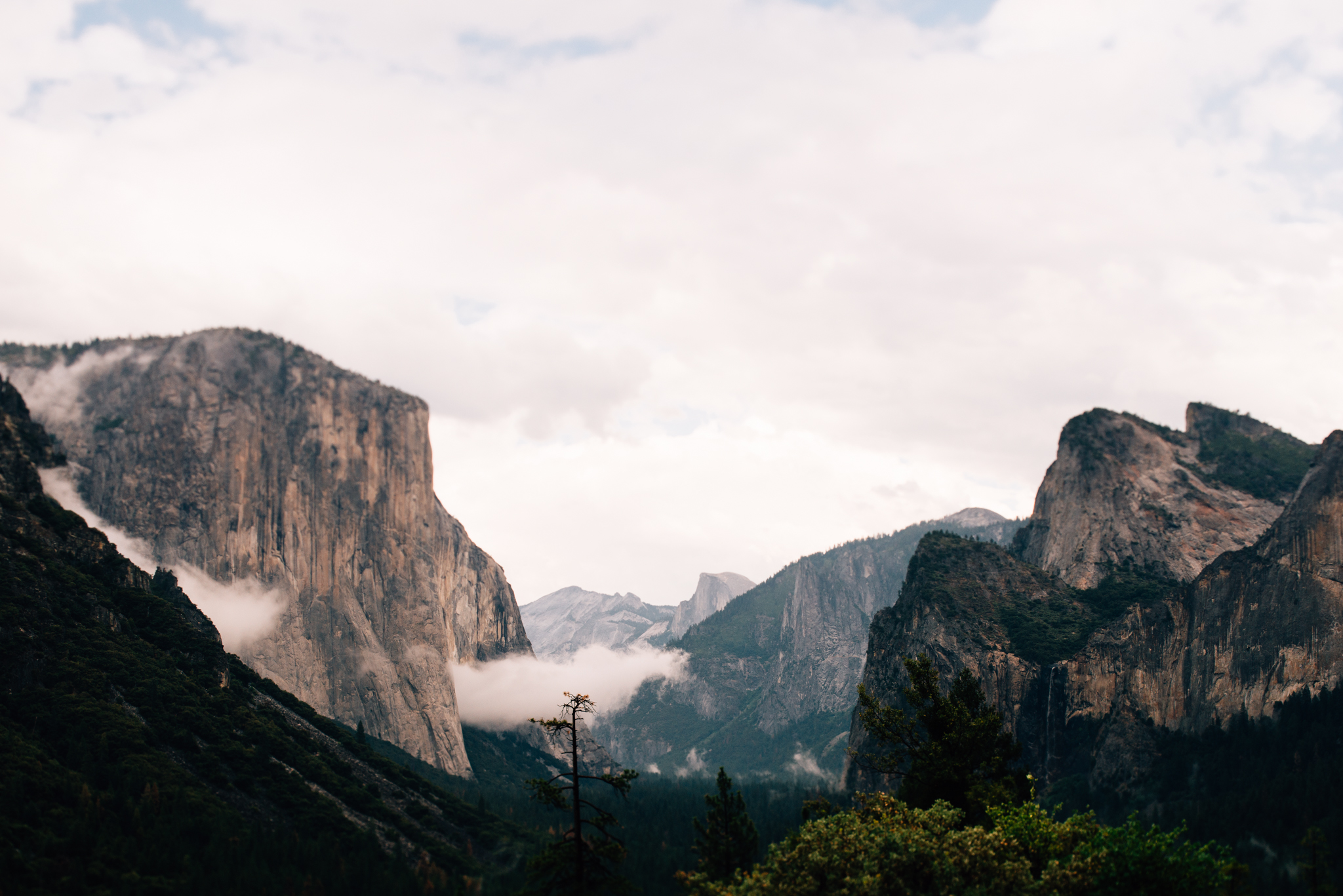©Isaiah & Taylor Photography - Los Angeles Wedding Photographer - Yosemite -018.jpg
