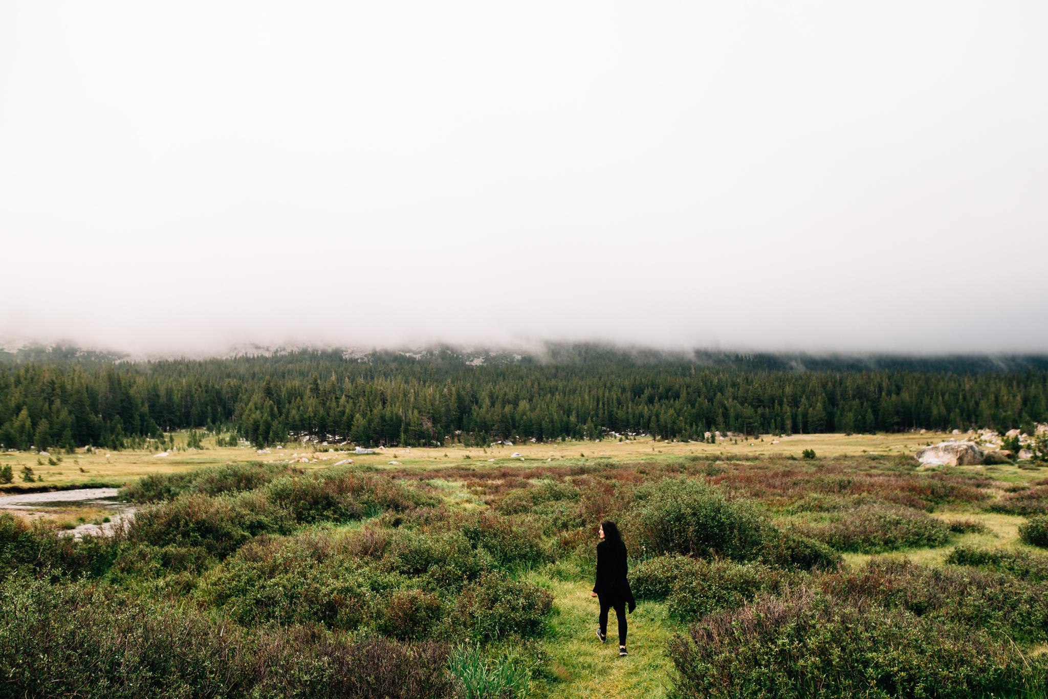©The Ryans Photography - Los Angeles Travel - Tuolomne Meadows Yosemite-016.jpg