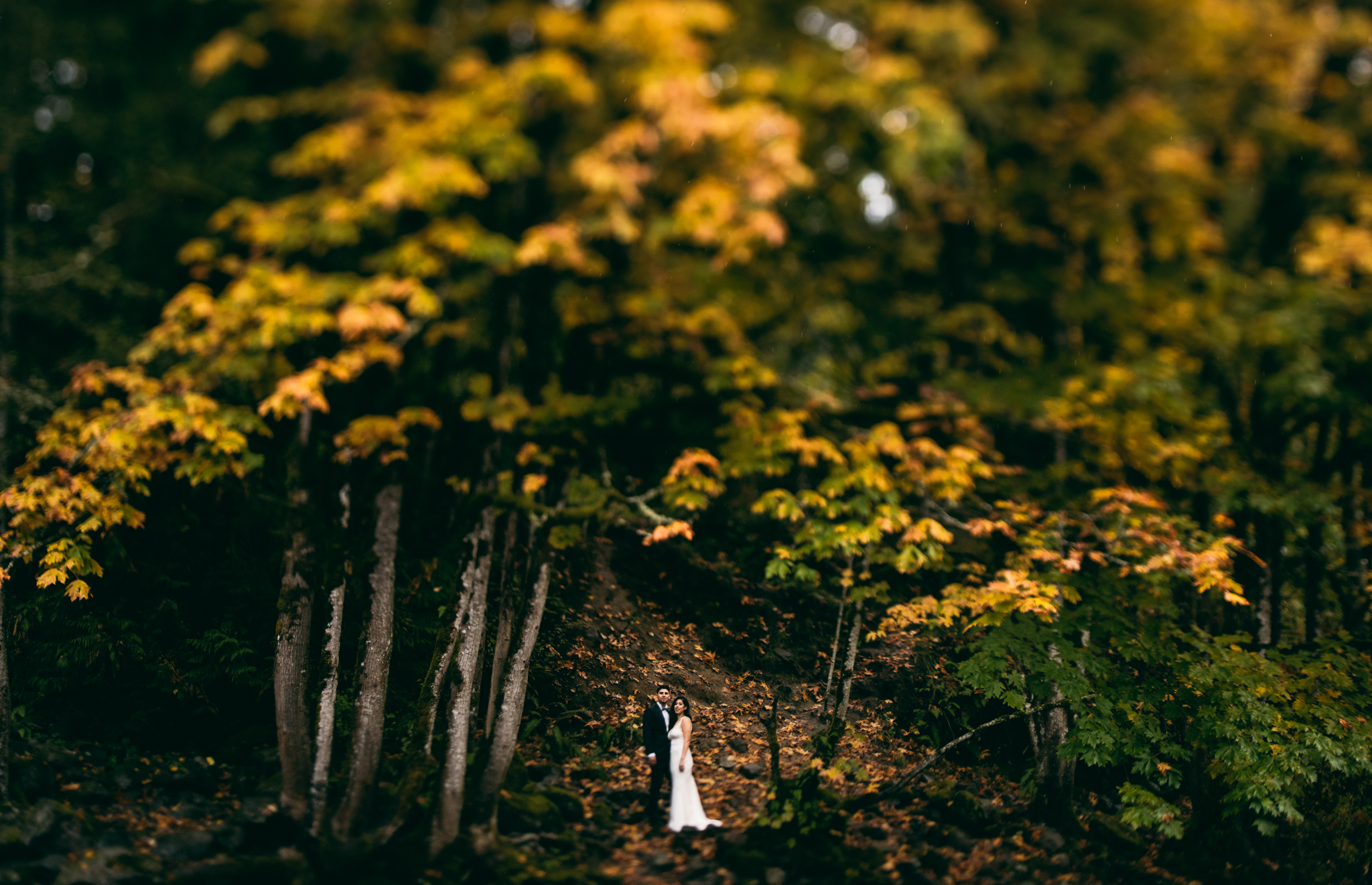 ©Isaiah & Taylor Photography - Los Angeles Wedding - Snoqualmie, Washington Honeymoon-023.jpg